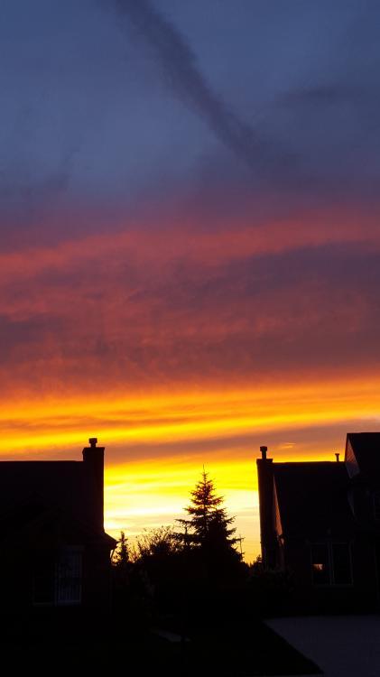 sunset9.9.15.jpg