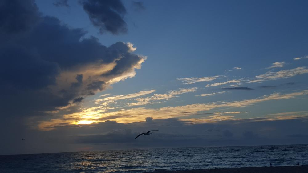 sunrise 10.14.15.miamibeach.jpg